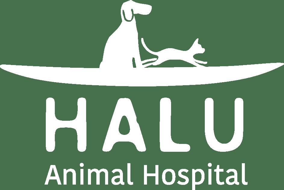 代官山のHALU動物病院